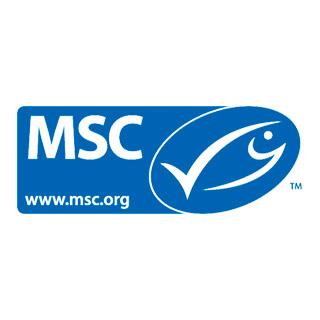 logo-msc-320